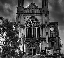 St Paul's Cathedral, Dunedin by DavidsArt