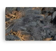 Natural Charcoal Grey Romney Fleece Canvas Print