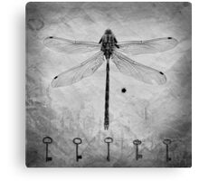 Dragonfly, texture, keys Canvas Print