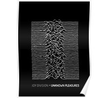 Joy Division - Unknown Pleasures Poster