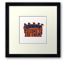 The Swamp Vintage Stadium Framed Print