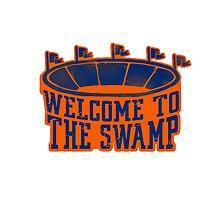 The Swamp Vintage Stadium Photographic Print