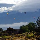 A Lot Of Hot Air by Loree McComb