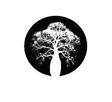 Bottle Tree Photographic Print