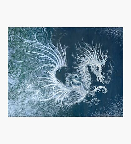 Frost Dragon Photographic Print