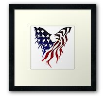 American Patriot Framed Print