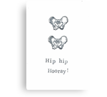 Hip Hip Hooray! Canvas Print