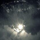 Hope Springs Eternal by Ben Loveday