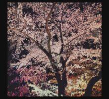 Sakura - Cherry Blossom - Kyoto Kids Tee