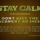 Stay Calm by Patricia Howitt