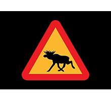 Caution Moose Sign Photographic Print