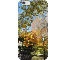 Central Park Fall Colors, New York City iPhone Case/Skin