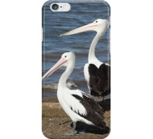 Australian Pelicans iPhone Case/Skin
