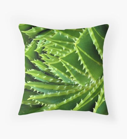 Buckley Rd Succulents 03 Throw Pillow