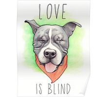 LOVE IS BLIND - Stevie the wonder dog Poster