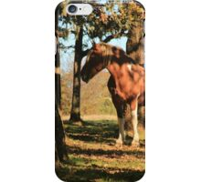 Standing In The Shadows iPhone Case/Skin