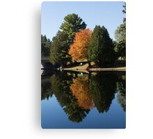 Defying the Green - the First Autumn Tree Canvas Print