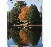 Defying the Green - the First Autumn Tree iPad Case/Skin