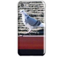 Pigeon iPhone Case/Skin