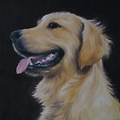 Golden Retriever #3 by Noewi