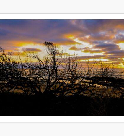 Sunrise at Wye River - Great Ocean Road, Victoria Sticker