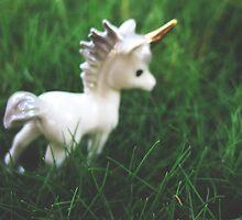 Unicorn in Wonderland  by Ginnybird