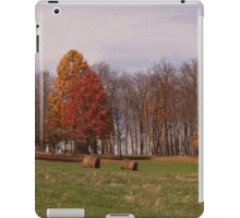 A typical fall scene iPad Case/Skin