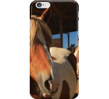 Grazing Mates iPhone Case/Skin