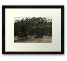 Morning Mist at Everglades National Park Framed Print