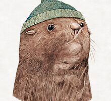 Fur Seal by AnimalCrew
