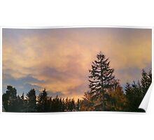 Washington Sunset  Poster