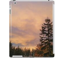 Washington Sunset  iPad Case/Skin