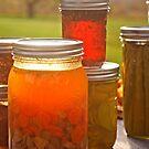 Canning in Autumn by Karin  Hildebrand Lau