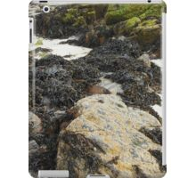 Wild Nature - Rocks, Sand and Seaweed, Great Bernera iPad Case/Skin