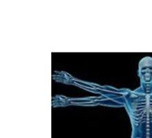 chiropractor in potters bar by seoexpert844