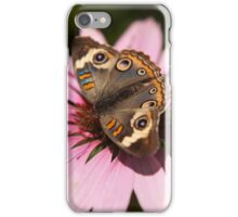Buckeye butterfly on a pink flower iPhone Case/Skin