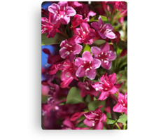 Happy Small Pink Flowers Canvas Print