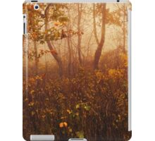 Fairyland iPad Case/Skin