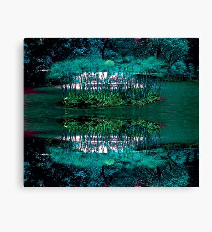 URBAN ENVIRONMENT Canvas Print