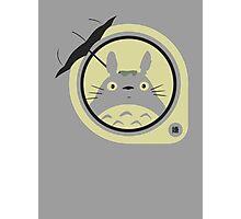 Totoro 2 Photographic Print