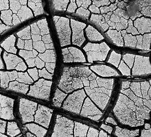 Dry river bed by SammyPhoto
