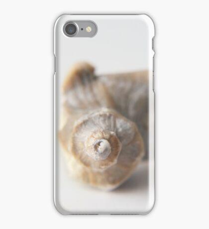 Silver white seashell iPhone Case/Skin