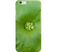Claytonia perfoliata, botanical, photograph, functional art iPhone Case/Skin