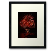 NYE .. A Bunch Of Flowers Framed Print