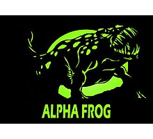 Alpha Frog Photographic Print