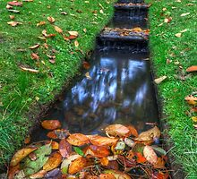 Autumn Waters by Darren Wilkes