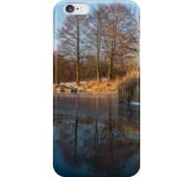 Still and Early - Icy Reflections With a Touch of Snow iPhone Case/Skin