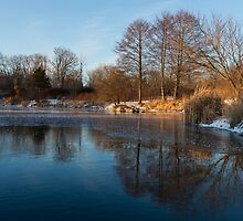 Still and Early - Icy Reflections With a Touch of Snow by Georgia Mizuleva