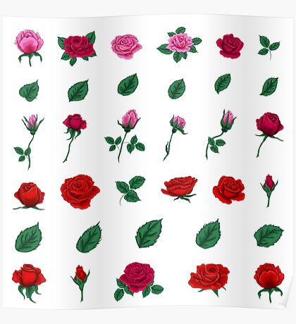 Set of Beautiful Roses. Flowers and Leaves Poster