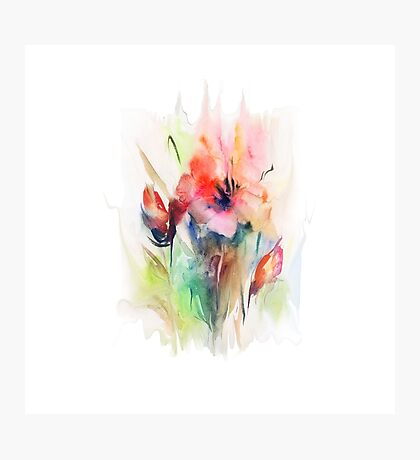 Floral watercolor illustration  Photographic Print